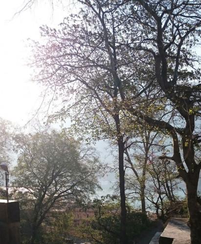 Ganga ma への近道。美しい朝に
